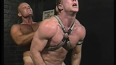 HUmongous studs with a fascination for BDSM make each other grunt