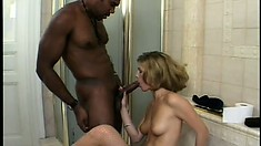 Ravishing blonde satisfies her desire for black cock in the bathroom