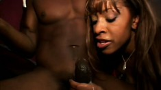 Two voluptuous ebony chicks take turns sucking and fucking a black rod