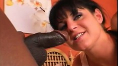Ariana Jollee gets both her holes stretched in hardcore interracial DP style