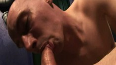 Hung young lads with massive cocks make each other moan loudly
