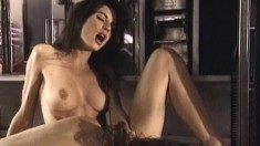A pair of horny brunette bitches make each other moan in pleasure