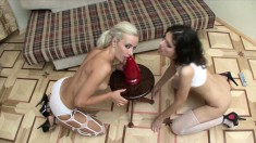 Beautiful lesbian lovers share a big red dildo and reach their climax