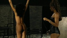 Sensational black cougar with big hooters gets tied up and punished
