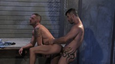 Irresistible hunk getting sexually satisfied by his hung gay partner