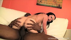 Pornstar with a huge black cock gets it worked on by a happy brunette