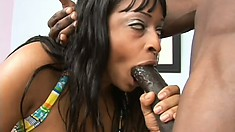 Carmen Hayes has big boobs and they bounce when he fucks her