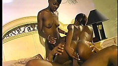 Two stunning ebony babes take turns feeding their hungry holes a huge black dick