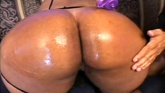 Busty Hot Ebony Fat Ass Fucked